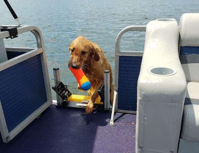 PM-6 on Ski Boat